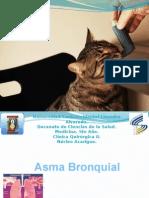 Asma Bronquial Lmrp