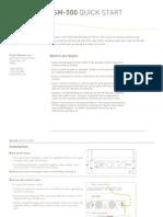 SM500_50_qs.pdf