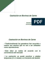 12_Castracion
