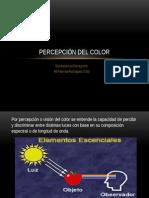 Vision Del Color/ sensacion y percepcion