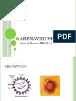 Arenavirus Report