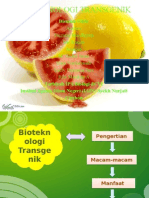 bioteknologi transgenik