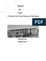 Cazri Report by Sunil Kansara