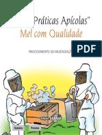 boas praticas apicolas - mel (imagens).pdf
