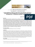 Características Físicas e Mecânicas de Mistura Asfáltica
