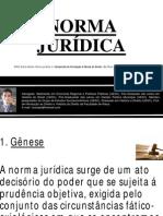 NORMA JURÍDICA.pdf