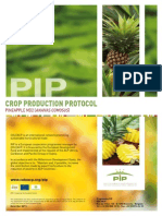 MD2 Pineapple Protocol