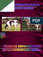 1 Tecnicas Reproductivas-ok