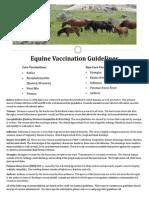 vaccine guideline handout