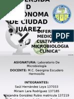 Agares de Microbiologia Clinica