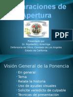 Declaraciones de Apertura 2013- Rigo Arrechiga JUICIO ORALES