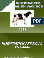 Inseminacion Artificial - VACAS