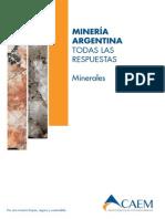 Minerales CAEM