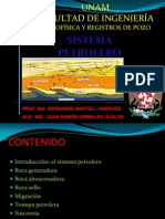 Sistema Petrolero Prp