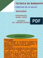 cusco biolagia