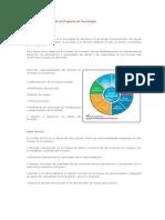 Estructura Funcional-PMP TI