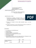Programa de Auditoría i 2009