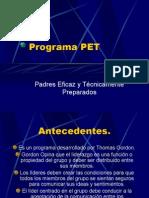 presentacionprogramapet-111204234413-phpapp02