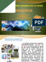 Bioquimica y su Relacion
