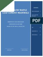 Maple Leaf cement Power flow internship Report