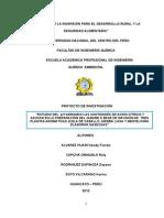 Informe de Gaseosa ARON