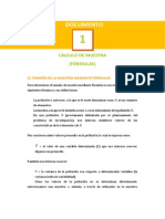 01 Documento CalculoMuestra