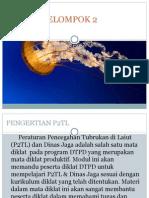 p2lt.pptx