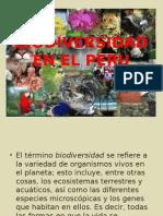 Biodiversidad en El Peru 2