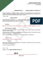 274_PRATICA_PENAL_HIPOTESE_CABIMENTO_PRISAO_HABEAS_CORPUS.pdf