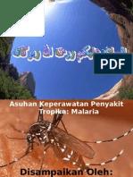 askep malaria tropika.ppt