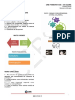 004_010913_OAB_XIII_DIREITO_PENAL_AULA_06.pdf