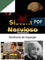 Sistema Nervioso FVV