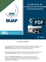 Prentacion Incubados 2015