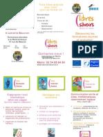 plaquette_visa_LB_Ver2_28-10-09