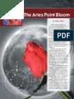 Aries Point Bloom_Kathy Rose