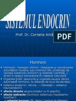 endocrin.ppt