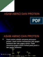Asam Amino Dan Protein 3
