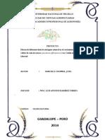 proyecto olericultura