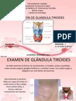 Examen de Glándula Tiroides
