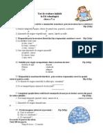 Test Evaluare Initiala Clasa a Va