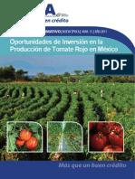 013 - Oportunidades de Inversión en La Producción de Tomate Rojo en México