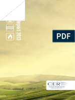 CER15017 CER Annual Report and Accounts - 2013 (English)