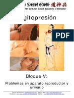 Digitopresion - Bloque v - Problemas en Aparato Reproductor y Urinario 0 (1)