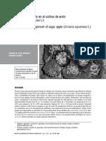 Manejo Integrado en el cultivo de Anón (Annona squamosa L)