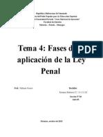 Ensayo de Derecho Penal Tema4