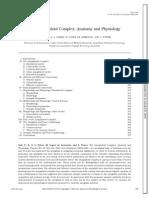 The Amygdaloid Complex Anatomy and Physiology