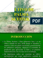 cultivodepalmaaceitera-111201121123-phpapp01