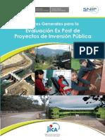 3. Post Inversion Pautas Generales Evaluacion Ex Post
