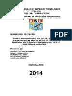 Proyecto de factibilidad.docx