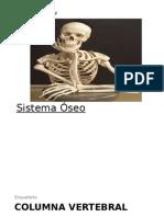 Esqueleto de La Columna Vertebral Terminado[1]